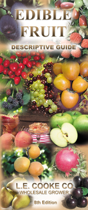 Edible Fruit Descriptive Guide